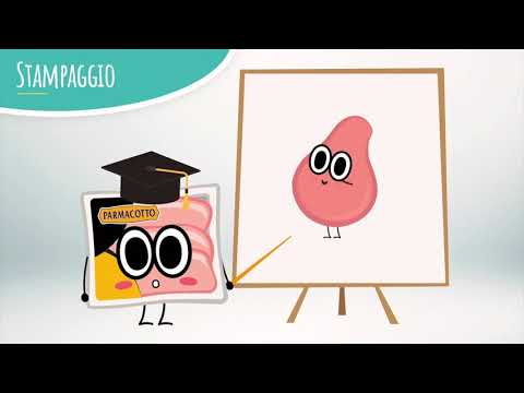 Parmacotto Educational