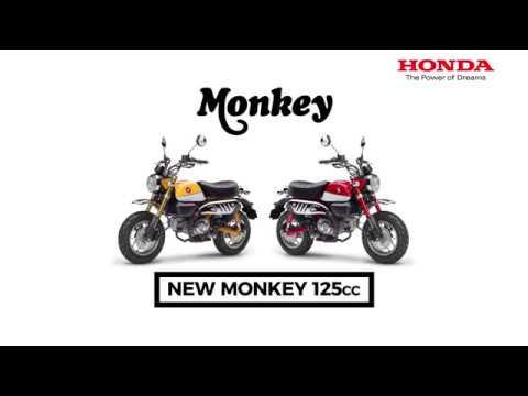Honda monkey rebirth - Image de marque & branding
