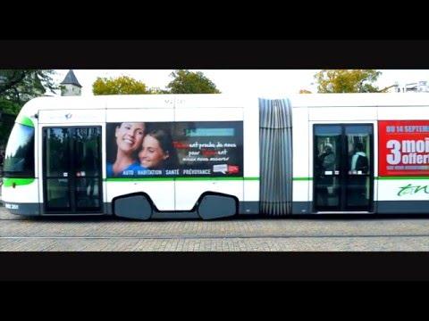 Campagne corporate Thélem Assurances - Publicité