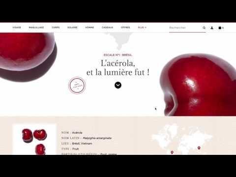 Clarins   Développement technique - Création de site internet