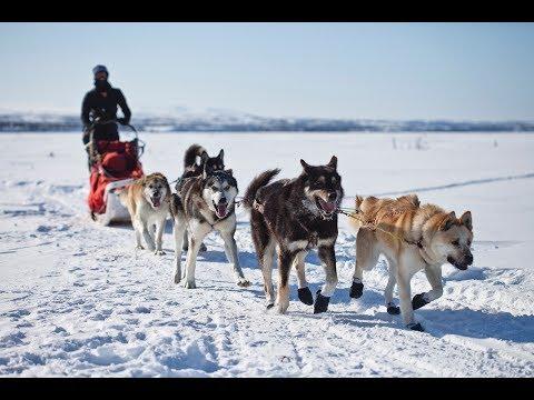 Séminaire au ski / sports d'hiver - Evénementiel