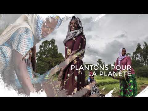 Fondation Yves Rocher - Vidéo